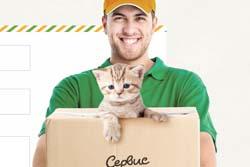 【画像】ロシアの銀行「貸し猫、始めました。」