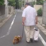 歩き方で男性の性格がわかっちゃう!