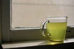 ペットボトルにオシッコいれて冷蔵庫で冷やしてたら、夫がお茶と間違えて飲んでてワロタw