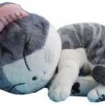 生まれた時からぬいぐるみを抱いて寝るネコが可愛すぎる