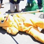 【画像】大阪・天王寺動物園でマレーグマが脱走  したという想定の捕獲訓練