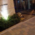 【画像】左足壊死ニキ、一般企業の入り口に住み着くwwwww