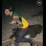 【豪州】20歳女、ウミガメの背中に座って写真撮影→批判殺到し逮捕につながる(写真あり)