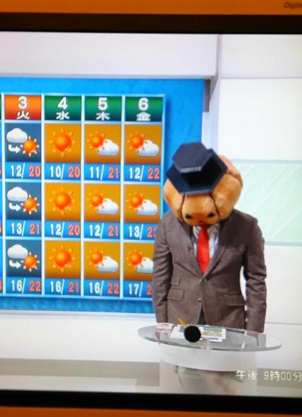 【画像】NHKニュースでびっくり!気象予報士、斉田さんが突然ハロウィーン仮装