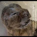 【画像】絶滅したホラアナライオン発見…永久凍土から凍結状態で、保存状態はきわめて良好-露シベリア