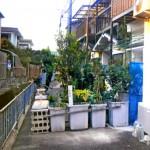 【大阪】自宅前の私道を植木鉢で意図的に塞いだ夫婦を逮捕(画像あり)