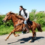 馬に性欲を感じる人が増加、3日に1頭が性的被害に