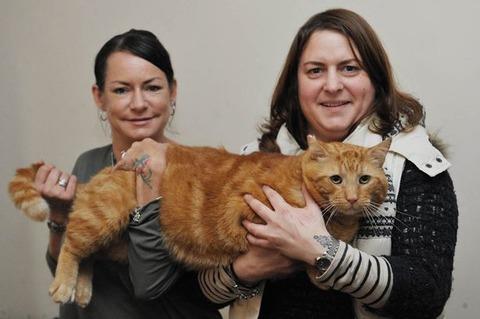 【画像】ネコにビッグマックを与え続けた結果・・・