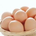 【産地偽装】島根産の卵を鳥取産と偽って販売していた会社役員を逮捕
