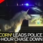 【画像】ユニコーン、警察に捕獲される
