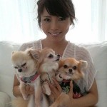 釈由美子の犬、日本酒を誤飲し死亡 愛犬家「もう犬を飼うな」と激怒