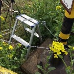 菜の花を踏み荒らして場所取りした撮り鉄に真岡鉄道「撮り鉄はもう来ないで」