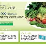 【悲報】水素水業者、「グラビトン野菜」を売る