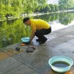 """日本旅行で""""街の清潔さ""""に衝撃を受けた中国人男性、帰国してから毎日公園を掃除"""