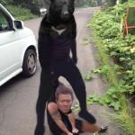 【悲報】コグマを轢き殺したDQN、親グマに捕まる