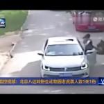 【動画】サファリパーク内の車中で男女が口論に → 女がキレて車外に → 野生のトラに襲われて死亡