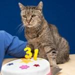 【画像】世界最高齢の猫wwww