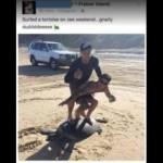 「ウミガメでサーフィン」した男性、投稿写真に批判殺到 当局が捜査