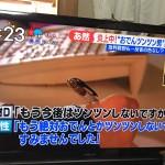 【朗報】コンビニおでんツンツン男、逮捕