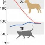 猫の人気がやばい 犬を飼う人激減wwwww