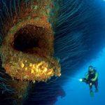 マリアナ海溝付近で謎の巨大生物が発見される