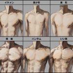 【画像】女の理想とする筋肉が明らかになるwwwww