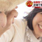竹内由恵,アナの乳搾り画像wwwww