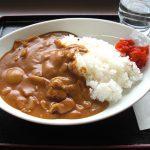韓国人「日本人はカレーを何で混ぜ混ぜして食べないの?混ぜて食べた方が旨いぞ」