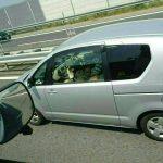 【画像】高速道路で全裸でフェラする女が発見されるwwwww