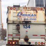 【悲報】アライグマ、アメリカでは「ゴミパンダ」と呼ばれてた