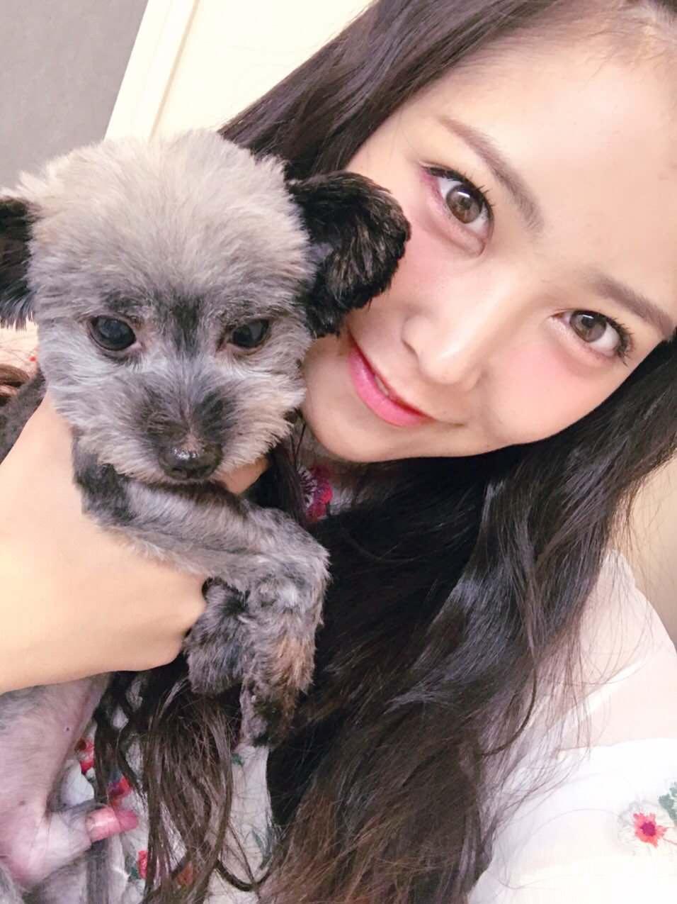 【画像】AKB48・白間美瑠、うっかり家族のズルムケち○こをTwitterで晒してしまう