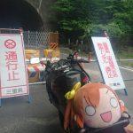【画像】バイク乗りでぬいぐるみ車載が大流行中wwwwww