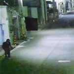 74歳忍者を逮捕。黒装束で塀の上を駆け抜け盗みを繰り返す