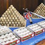 警察官「大量に野球ボールを盗んだ犯人から野球ボールを押収したから報道用に並べるか…」