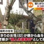 【悲報】にゃんカス、寝たきりのババア(82)を襲う