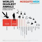 サメ「人間のこと年間10人しか殺してないのになんで殺人動物の代名詞になってんだよ…」