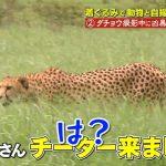 【悲報】狩野英孝、今度はテレビ番組での出演で大炎上してしまう
