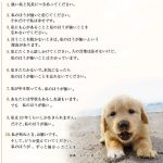 犬「私をたたかないで。本気になったら私の方が強い事を忘れないでください」