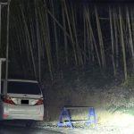 【悲報】秋元優里アナ、竹林でカーセックスを撮られる