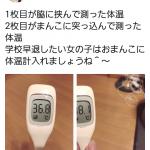 【画像】まんさん、学校を休みたすぎてとんでもない体温の計り方を考案してしまう・・・