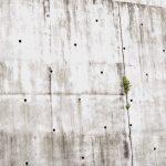 【画像】スズメのマンションが発見される!