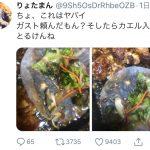 【画像】Twitter民「ガストでチーズinハンバーグ注文したらカエルがinしてた」