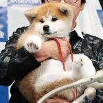 【画像】ザギトワと秋田犬のマサルとの2ショットが天使すぎると世界で話題になってしまう…