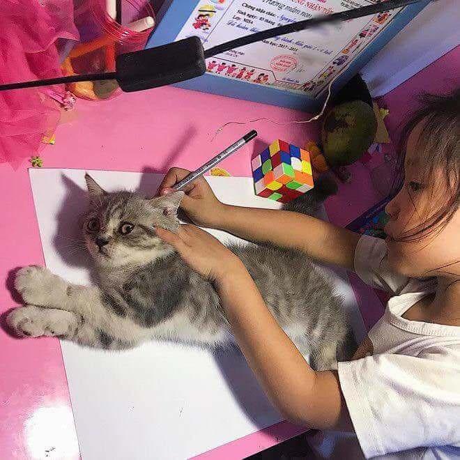【画像】幼女「ネッコの絵が上手く描けへん…😢せや!😆」