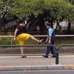 【動画】警察官を蹴飛ばしたガイジ、無事に組み敷かれる
