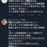 【炎上】月曜から夜ふかしの桐谷さん、猫を飼うことを批判される