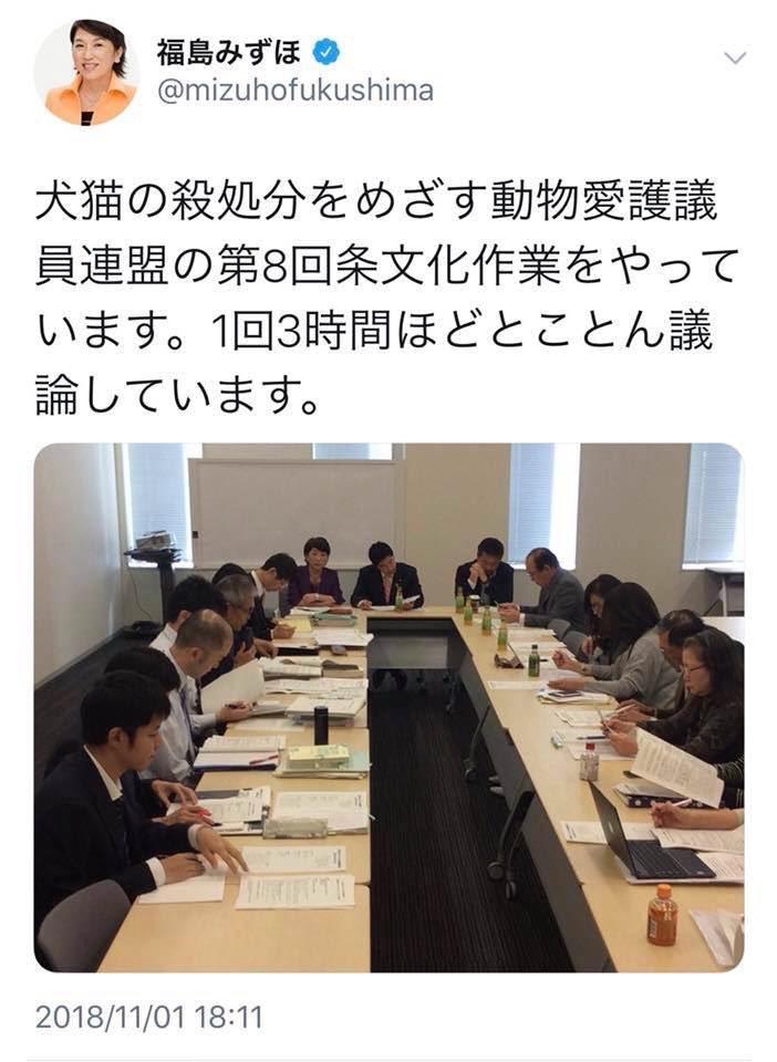 福島みずほ議員「犬猫の殺処分をめざす動物愛護やっています」