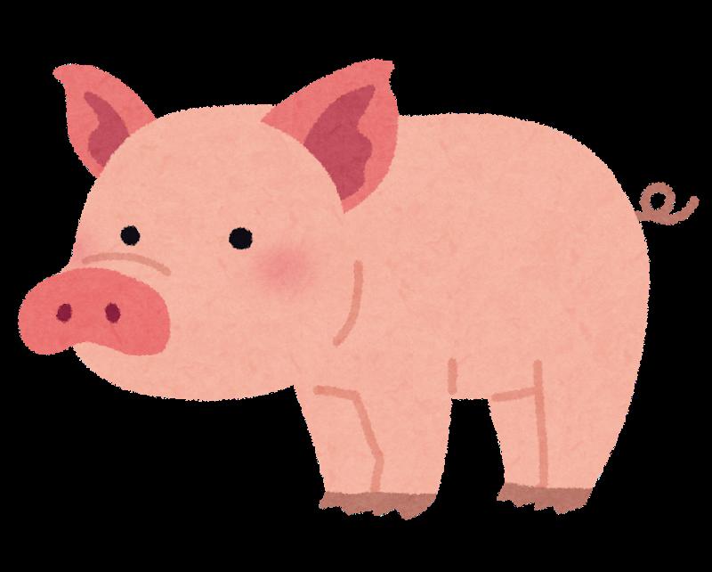 【悲報】自衛隊さん、豚さん7500頭の処刑で正月が終わる