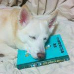 【画像】勉強に疲れて居眠リーヌ、見つかる