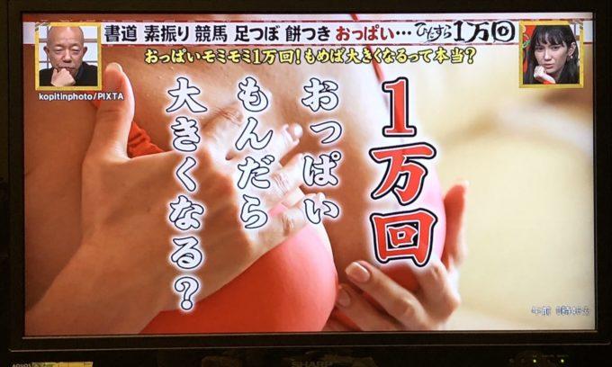【画像】普乳女子のおっぱいを1万回揉んだ結果wwww